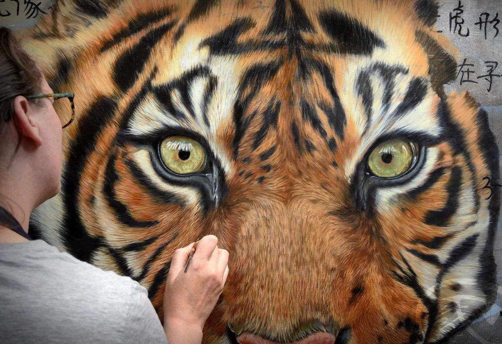 Solo 2022 - Tigre - Chine - Kylroze photo